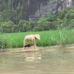 https://roadlesstraveled.smugmug.com/Website-Photos/Website-Galleries/Vietnam/i-k3f35pj