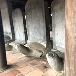 https://roadlesstraveled.smugmug.com/Website-Photos/Website-Galleries/Vietnam/i-tP9ssw7