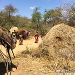 https://roadlesstraveled.smugmug.com/Website-Photos/Website-Galleries/Watermarked-Africa-Tanzania-/i-2NwL7SW