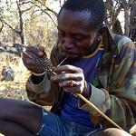 https://roadlesstraveled.smugmug.com/Website-Photos/Website-Galleries/Watermarked-Africa-Tanzania-/i-9fpVvsN