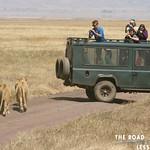 https://roadlesstraveled.smugmug.com/Website-Photos/Website-Galleries/Watermarked-Africa-Tanzania-/i-SmtkrC6