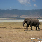 https://roadlesstraveled.smugmug.com/Website-Photos/Website-Galleries/Watermarked-Africa-Tanzania-/i-mFmgX7h