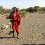 https://roadlesstraveled.smugmug.com/Website-Photos/Website-Galleries/Watermarked-Africa-Tanzania-/i-q9Nb4B8