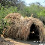 https://roadlesstraveled.smugmug.com/Website-Photos/Website-Galleries/Watermarked-Africa-Tanzania-/i-tBLw63c