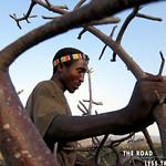 https://roadlesstraveled.smugmug.com/Website-Photos/Website-Galleries/Watermarked-Africa-Tanzania-/i-w4dmNtF