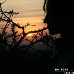 https://roadlesstraveled.smugmug.com/Website-Photos/Website-Galleries/Watermarked-Africa-Tanzania-/i-xCftmPG