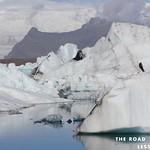 https://roadlesstraveled.smugmug.com/Website-Photos/Website-Galleries/Watermarked-Availabilit-Updat/i-Fvz3PXM
