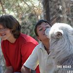https://roadlesstraveled.smugmug.com/Website-Photos/Website-Galleries/Watermarked-Colorado-CotW/i-TBHBMKG