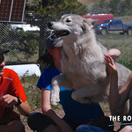 https://roadlesstraveled.smugmug.com/Website-Photos/Website-Galleries/Watermarked-Colorado-CotW/i-v63JNzk