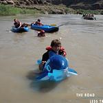 https://roadlesstraveled.smugmug.com/Website-Photos/Website-Galleries/Watermarked-Colorado-Utah/i-9krKv86
