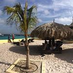 https://roadlesstraveled.smugmug.com/Website-Photos/Website-Galleries/Watermarked-Dutch-Caribbean/i-5Jkv96f