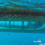 https://roadlesstraveled.smugmug.com/Website-Photos/Website-Galleries/Watermarked-Dutch-Caribbean/i-7Pg3nXz