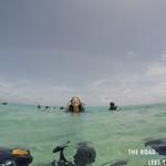https://roadlesstraveled.smugmug.com/Website-Photos/Website-Galleries/Watermarked-Dutch-Caribbean/i-9CjNwDS