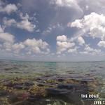 https://roadlesstraveled.smugmug.com/Website-Photos/Website-Galleries/Watermarked-Dutch-Caribbean/i-RvfWg8s