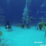 https://roadlesstraveled.smugmug.com/Website-Photos/Website-Galleries/Watermarked-Dutch-Caribbean/i-kVNZLF5