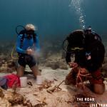 https://roadlesstraveled.smugmug.com/Website-Photos/Website-Galleries/Watermarked-Dutch-Caribbean/i-rNM4HR5