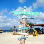 https://roadlesstraveled.smugmug.com/Website-Photos/Website-Galleries/Watermarked-Dutch-Caribbean/i-rmwzPNk