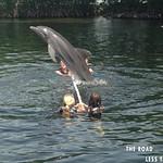 https://roadlesstraveled.smugmug.com/Website-Photos/Website-Galleries/Watermarked-Florida-Keys-Web-P/i-22XTj3f