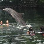 https://roadlesstraveled.smugmug.com/Website-Photos/Website-Galleries/Watermarked-Florida-Keys-Web-P/i-D3L5rFC