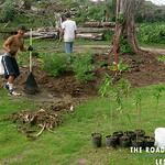 https://roadlesstraveled.smugmug.com/Website-Photos/Website-Galleries/Watermarked-Hawaii-Ahola-Aina/i-T6mJcFf