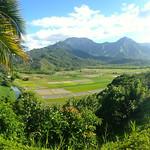 https://roadlesstraveled.smugmug.com/Website-Photos/Website-Galleries/Watermarked-Hawaii-Ahola-Aina/i-TKcTSQb