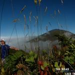https://roadlesstraveled.smugmug.com/Website-Photos/Website-Galleries/Watermarked-Hawaii-Ahola-Aina/i-TbS2kbX