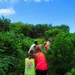 https://roadlesstraveled.smugmug.com/Website-Photos/Website-Galleries/Watermarked-Hawaii-Ahola-Aina/i-mTzBrJP