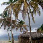 https://roadlesstraveled.smugmug.com/Website-Photos/Website-Galleries/Watermarked-Los-Cayucos-Web-Ph/i-63JVZbn