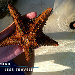 https://roadlesstraveled.smugmug.com/Website-Photos/Website-Galleries/Watermarked-Los-Cayucos-Web-Ph/i-g6dmpbs