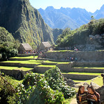 https://roadlesstraveled.smugmug.com/Website-Photos/Website-Galleries/Watermarked-Peru-Pachamama/i-PMvTf5h