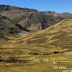 https://roadlesstraveled.smugmug.com/Website-Photos/Website-Galleries/Watermarked-Peru-Pachamama/i-S2FVZQ4