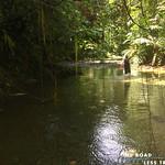 https://roadlesstraveled.smugmug.com/Website-Photos/Website-Galleries/Watermarked-Pura-Vida-Web-Gall/i-Sfj8fBF