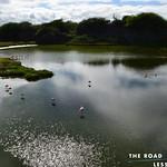 https://roadlesstraveled.smugmug.com/Website-Photos/Website-Galleries/Watermarked-Sigue-No-Mas/i-XCqSt6D