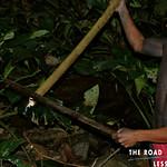 https://roadlesstraveled.smugmug.com/Website-Photos/Website-Galleries/Watermarked-Vistamar-Web-Photo/i-KG9pRWZ