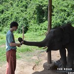 https://roadlesstraveled.smugmug.com/Website-Photos/Website-Galleries/Thailand/i-2pWXvsD