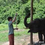 https://roadlesstraveled.smugmug.com/Website-Photos/Website-Galleries/Thailand/i-Vrzh5QT