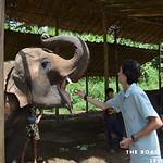 https://roadlesstraveled.smugmug.com/Website-Photos/Website-Galleries/Thailand/i-VxdgqQm