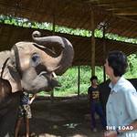 https://roadlesstraveled.smugmug.com/Website-Photos/Website-Galleries/Thailand/i-W93h4SB