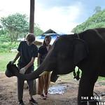 https://roadlesstraveled.smugmug.com/Website-Photos/Website-Galleries/Thailand/i-x2W4jw3