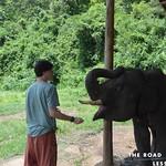 https://roadlesstraveled.smugmug.com/Website-Photos/Website-Galleries/Thailand/i-xVb35Dp